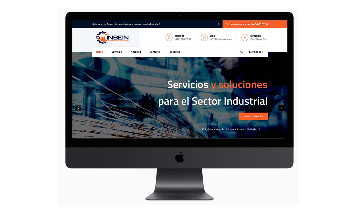 Sitio web INSEIN